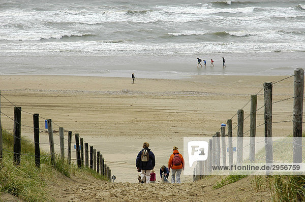 Family with children is walking through the dunes to the beach  Katwijk aan Zee  South Holland  Holland  The Netherlands