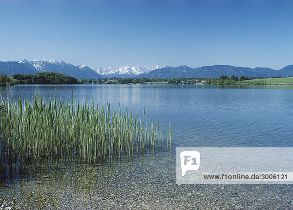 See in Voralpenlandschaft  Allgäu  Bayern  Deutschland