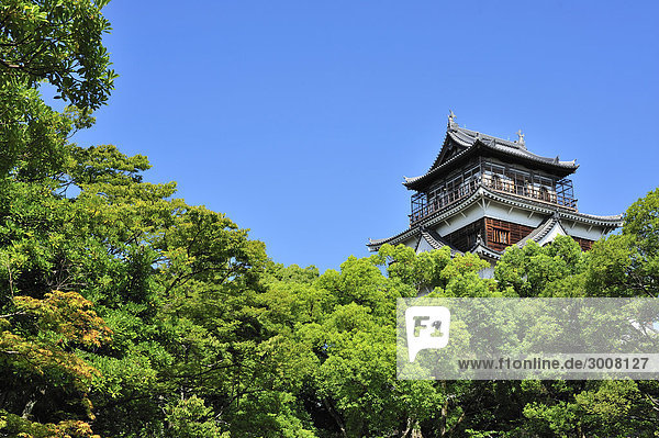 10856546  Japan  Hiroshima Burg  Burg  Hiroshi