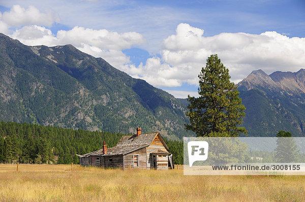 Ländliches Motiv ländliche Motive Bauernhaus Wohnhaus Baum Landschaft Wald Natur Scheune Wiese Rocky Mountains British Columbia Kanada