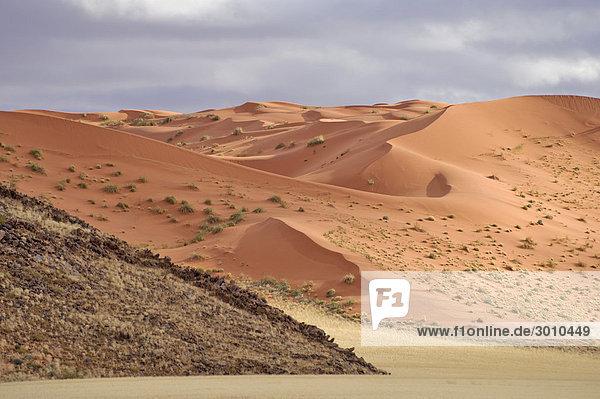 Sanddünen der Namib an der D0707  Namibia  Afrika
