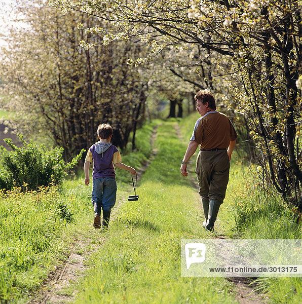 Vater und Sohn 6-7 Wandern auf Pfad Rückseite anzeigen