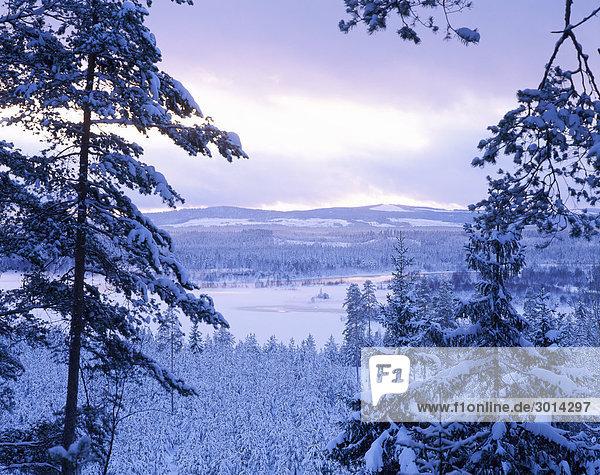 Osterdalalven during winter.