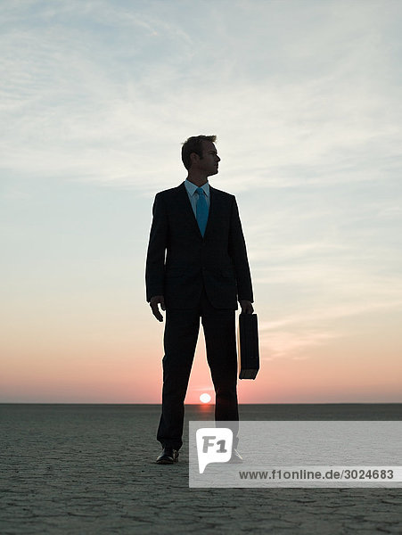 Geschäftsmann in der Wüste stehend
