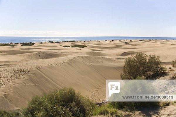 Sanddünen von Maspalomas  Gran Canaria  Kanarische Inseln  Spanien