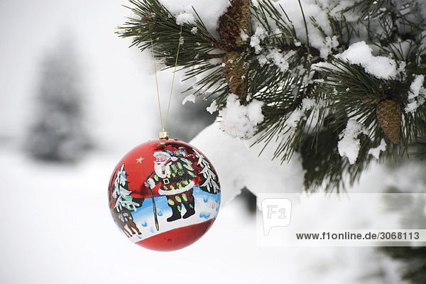 Farbenfroher Weihnachtsschmuck am schneebedeckten Ast