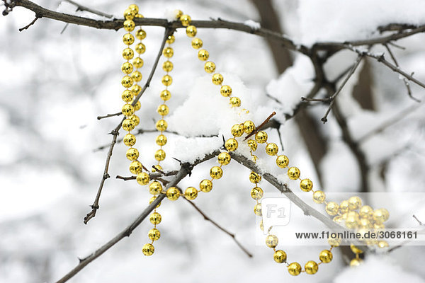 Perlengirlande drapiert auf schneebedeckten Ästen eines kahlen Baumes