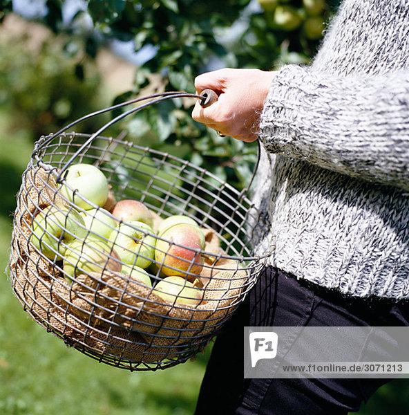 Eine Frau und einen Korb voller Äpfel Schweden.