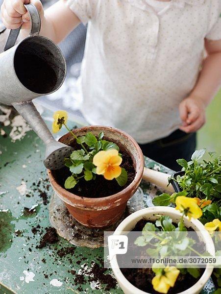Pflanze Mädchen eintopfen