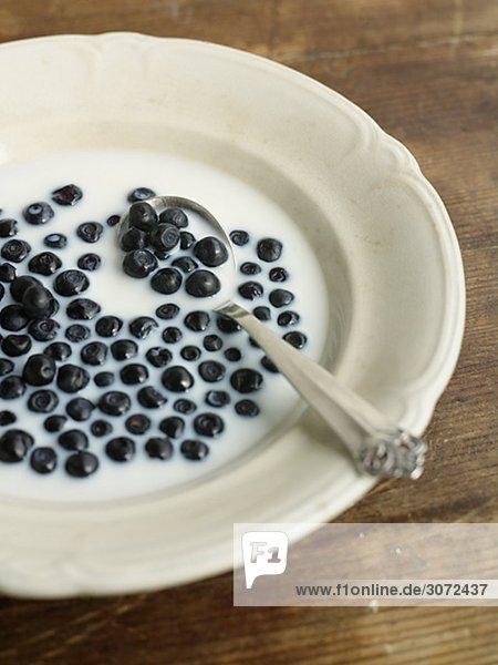 Ein Teller voll von Milch und Heidelbeeren Schweden