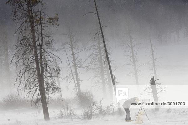 Ein Fotograf fotografiert im Yellowstone Nationalpark  Lamar Valley  Wyoming.