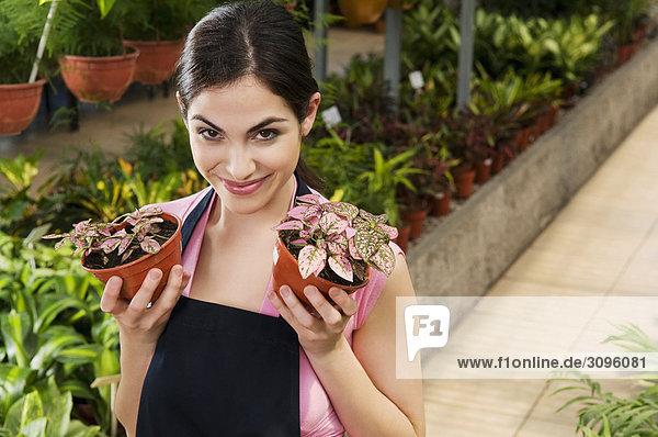 Frau, halten, Pflanze, Topfpflanze, Treibhaus