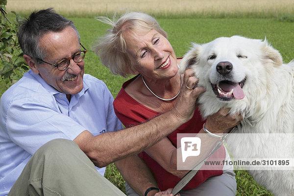 Seniorenpaar  streicheln Hund