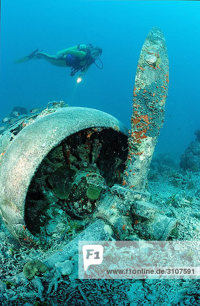 Airplane wreck and scuba diver  Papua New Guinea  Pacific Ocean
