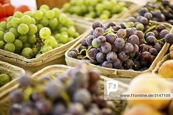 Weiße und blaue Trauben in Schalen auf dem Markt