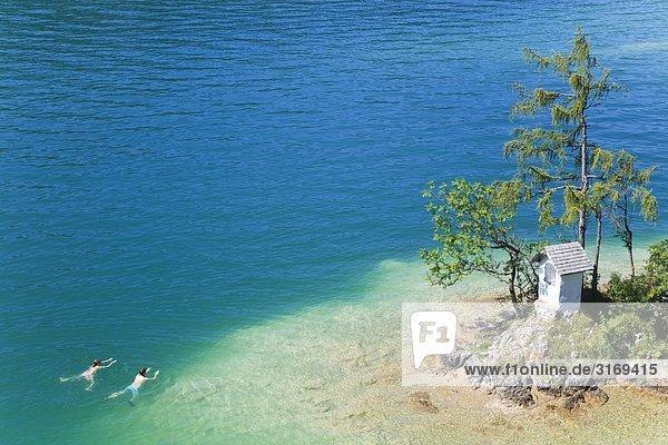 Paar schwimmt am Ufer einer kleinen Insel im Wolfgangsee  Salzkammergut  Österreich  Vogelperspektive