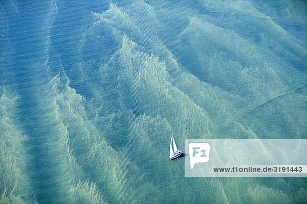 Ein Segelboot in den Ozean mit Algenblüte  Schweden.