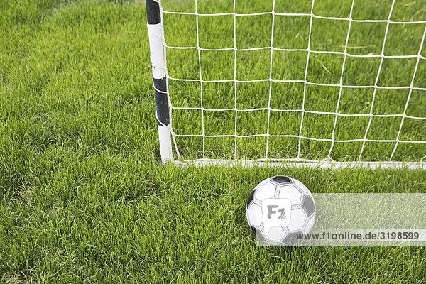 Stilleben Fußball und Ziel