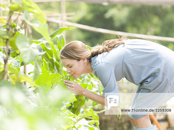 Woman smelling plants in country