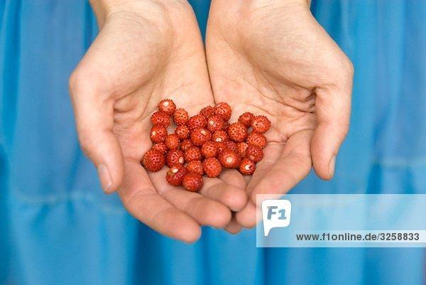 Eine Frau  wilde Erdbeeren in ihren Händen hält.