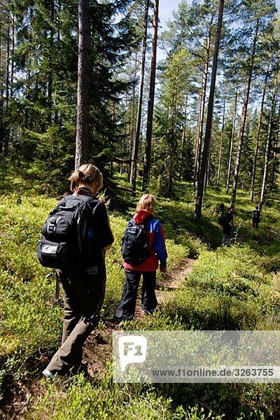 Eine Wanderung in der Natur  Schweden.
