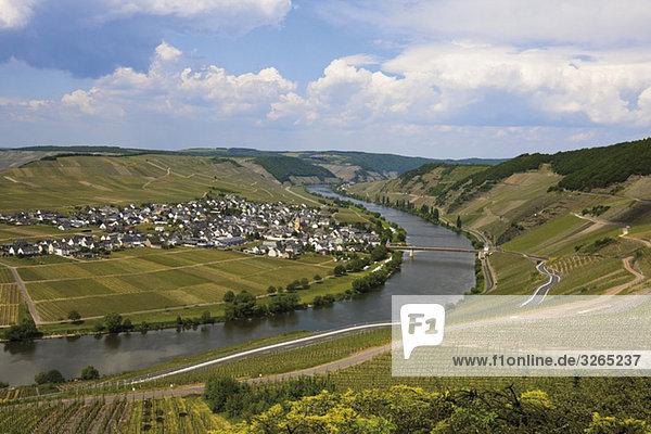Germany  Rhineland-Palatinate  Moselle River near Trittenheim