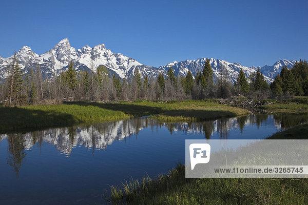 USA  Wyoming  Snake River  im Hintergrund Teton Berge