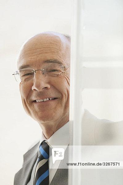 Senior Geschäftsmann  lächelnd  Portrait Senior Geschäftsmann, lächelnd, Portrait