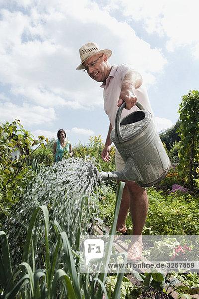 Senior Mann beim Blumen gießen  Frau im Hintergrund
