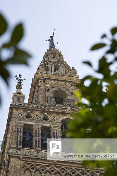 Untersicht des Glockenturms des ein DOM  Giralda de Sevilla  Sevilla  Sevilla  Spanien