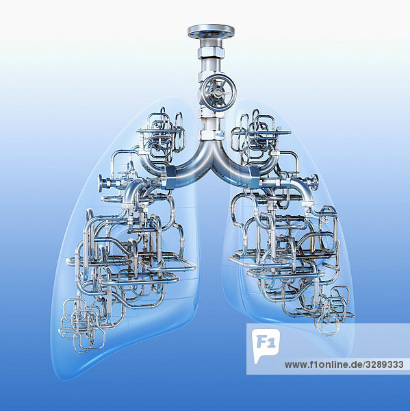 Rohre verbinden Lungenflügel