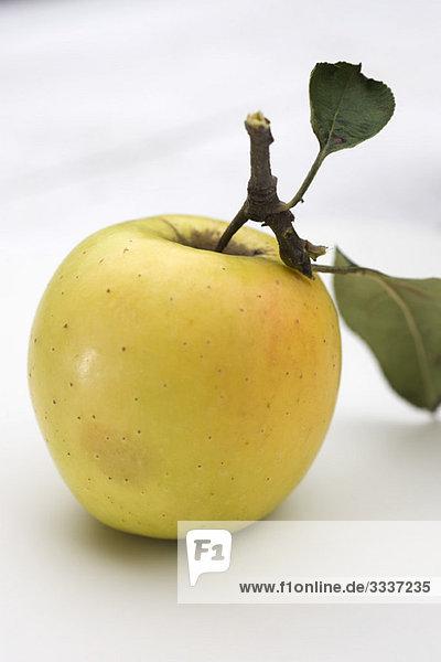 Goldener leckerer Apfel