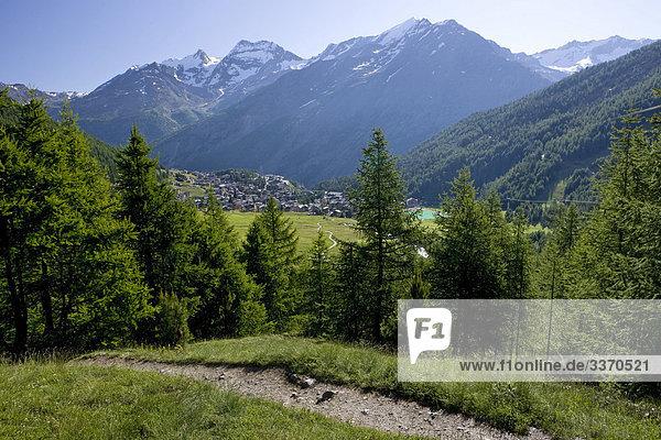 Landschaftlich schön landschaftlich reizvoll Berg Baum Wald Natur Holz Platz Saas Fee Schnee schweizerisch Schweiz Kanton Wallis