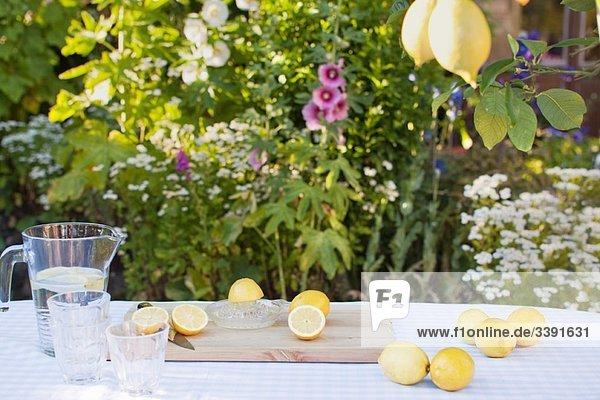 Stillleben von Zitronen und Limonadenglas.