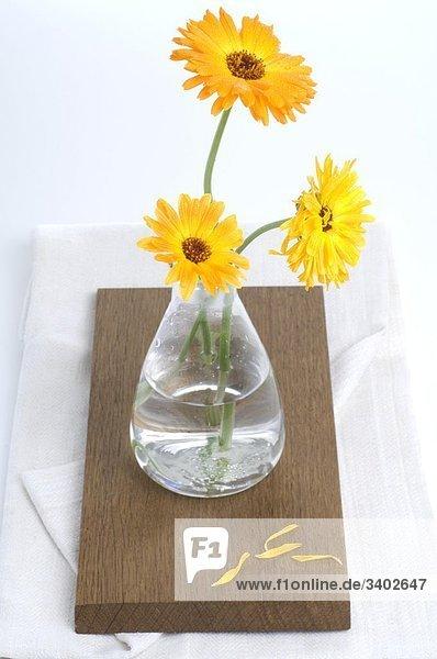Ringelblumen in einer Vase