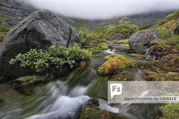 Bach im Chasnaiok River Valley auf Krim