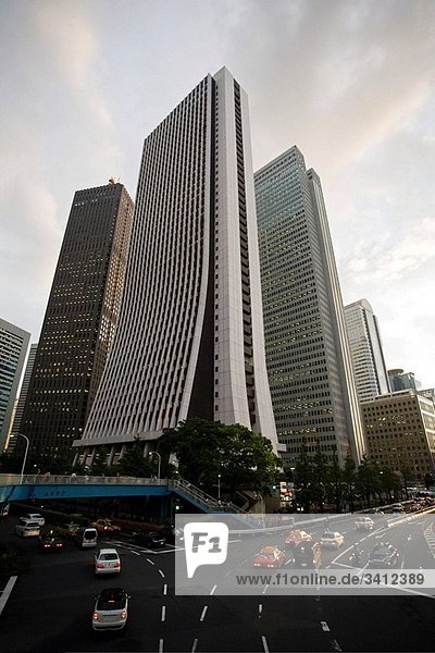 Omekaido Avenue  Shinjuku district West side  Tokyo  Japan (Spring 2009)