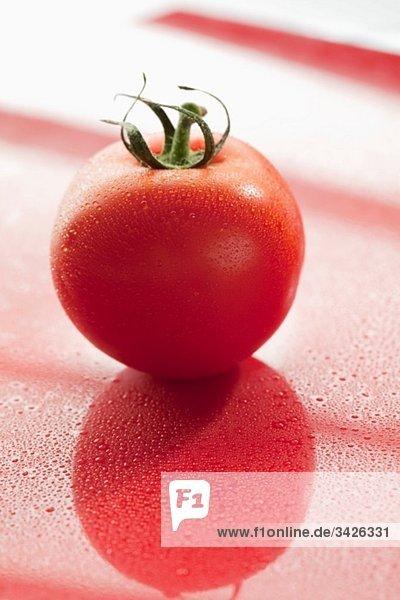 Reife Tomate mit Wassertropfen
