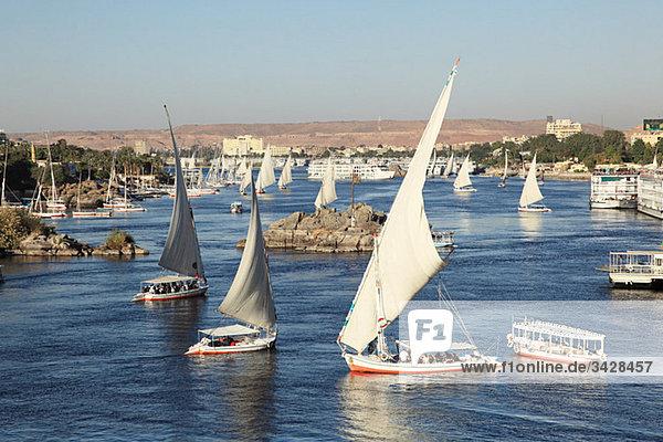 Felucca-Boote auf dem Nilkatarakt