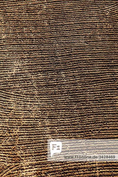 Gepflügte Felder am Westufer von Nilägypten