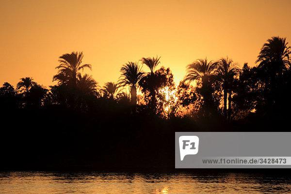 Rive nile in der Nähe von Luxor bei Sonnenuntergang