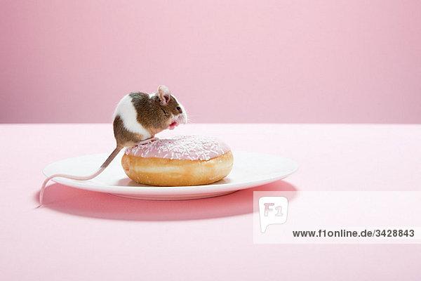 Maus und Doughnut auf Teller