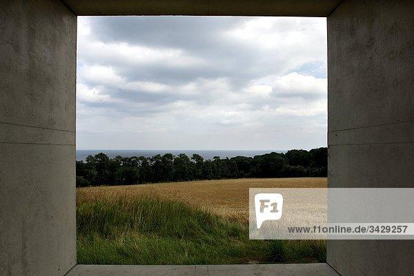 Weizenfeld angezeigt durch ein Fenster  Osterlen  Skane  Schweden