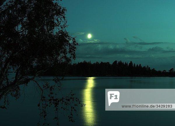 Schweden - Baum an einem See in der Nacht