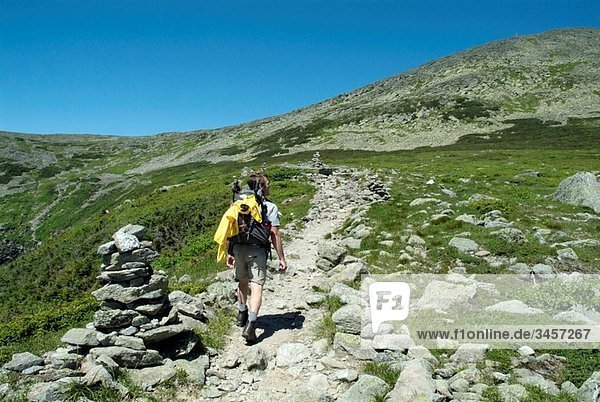 The eastern slopes of Mount Washington from Lions Head Trail during the summer months in the scenic landscape of the White Mountains  New Hampshire USA Notes: Lions Head Trail is located in Tuckerman Ravine on the eastern slopes of Mount Washington