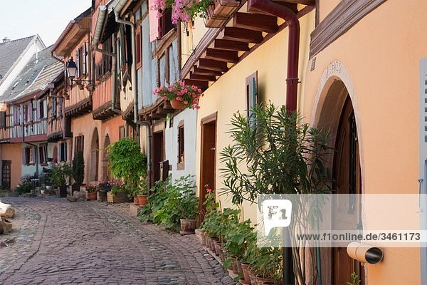 Eguisheim  Alsace  France  Europe Colourful old half-timbered buildings on narrow cobbled street in medieval village on the wine route
