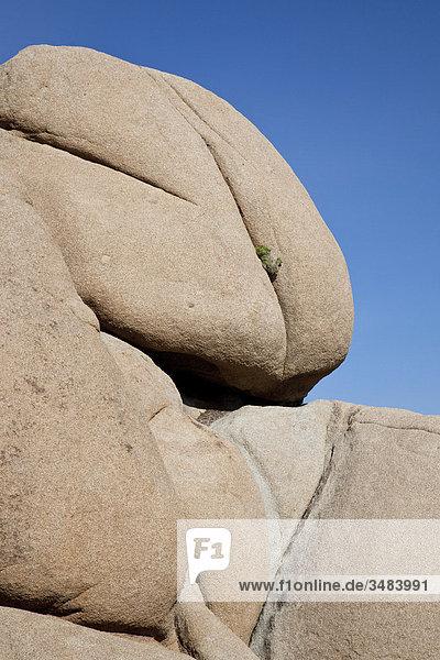 Felsbrocken im Joshua Tree Nationalpark  Kalifornien  USA  Flachwinkelansicht