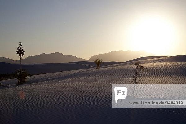 Sonnenuntergang im White Sands National Monument  New Mexico  USA