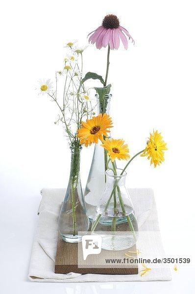 Ringelblumen in drei Vase