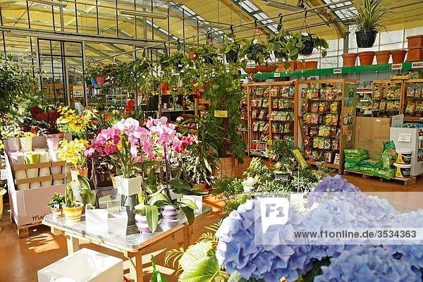 Garden Center Luchon France